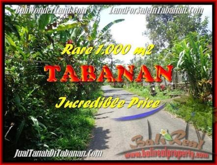 Exotic PROPERTY 1.000 m2 LAND IN Tabanan Pupuan FOR SALE TJTB171