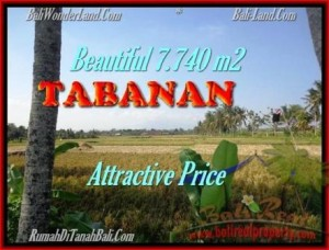 Exotic PROPERTY 7.740 m2 LAND IN Tabanan kota FOR SALE TJTB173