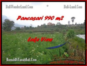 FOR SALE Beautiful 990 m2 LAND IN TABANAN BALI TJTB174