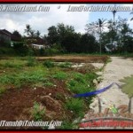 500 m2 LAND FOR SALE IN TABANAN BALI TJTB201