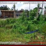Affordable 500 m2 LAND IN TABANAN BALI FOR SALE TJTB201