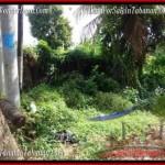 FOR SALE Beautiful 500 m2 LAND IN TABANAN BALI TJTB202
