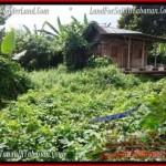 Exotic TABANAN BALI 500 m2 LAND FOR SALE TJTB202