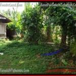 Affordable 500 m2 LAND IN TABANAN BALI FOR SALE TJTB202