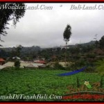 Affordable 1,400 m2 LAND IN TABANAN BALI FOR SALE TJTB203