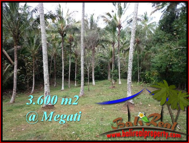 Magnificent PROPERTY TABANAN LAND FOR SALE TJTB211