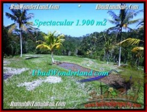 Exotic 1,900 m2 LAND IN UBUD BALI FOR SALE TJUB505