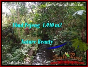 Affordable 1,910 m2 LAND FOR SALE IN UBUD BALI TJUB504