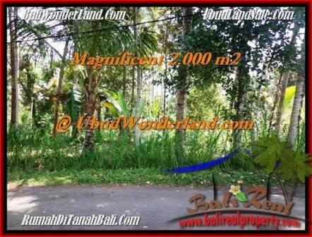 Magnificent UBUD BALI 2,000 m2 LAND FOR SALE TJUB506
