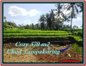 FOR SALE Affordable PROPERTY 570 m2 LAND IN UBUD BALI TJUB511