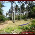 Beautiful PROPERTY LAND FOR SALE IN TABANAN BALI TJTB158