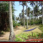Exotic 2,345 m2 LAND SALE IN TABANAN BALI TJTB158