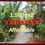 Beautiful PROPERTY LAND FOR SALE IN TABANAN BALI TJTB159
