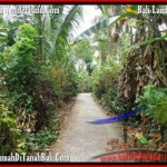 Beautiful 3,000 m2 LAND FOR SALE IN Tabanan Selemadeg TJTB159