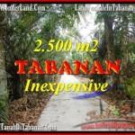 Affordable PROPERTY TABANAN LAND FOR SALE TJTB160