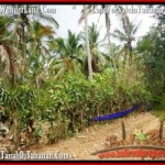 FOR SALE Magnificent PROPERTY LAND IN TABANAN TJTB160