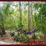 Affordable TABANAN BALI 2,500 m2 LAND FOR SALE TJTB160