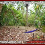 FOR SALE Magnificent PROPERTY LAND IN TABANAN TJTB161