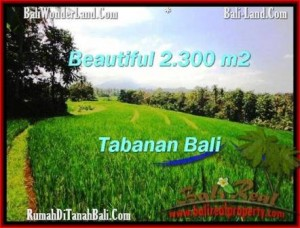 Exotic LAND SALE IN Tabanan Selemadeg BALI TJTB209