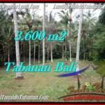 Exotic PROPERTY 3,600 m2 LAND IN Tabanan Selemadeg FOR SALE TJTB211