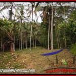 Beautiful PROPERTY 3,600 m2 LAND SALE IN Tabanan Selemadeg TJTB211