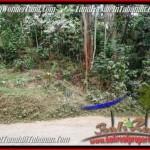 FOR SALE Affordable LAND IN Tabanan Selemadeg BALI TJTB211