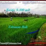 Magnificent 9,500 m2 LAND SALE IN TABANAN BALI TJTB210