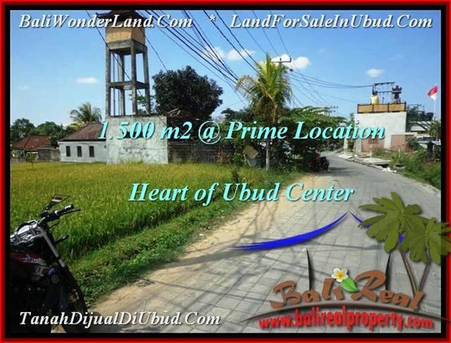 FOR SALE Magnificent LAND IN Sentral Ubud BALI TJUB508