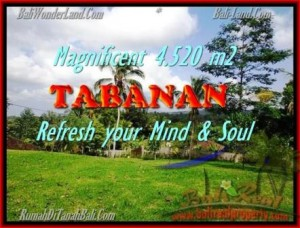 Beautiful PROPERTY LAND SALE IN TABANAN TJTB154