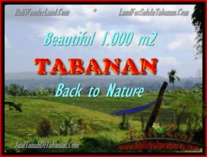 Beautiful PROPERTY LAND SALE IN TABANAN TJTB155