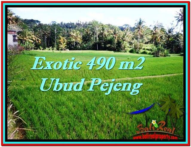 Beautiful 490 m2 LAND SALE IN UBUD BALI TJUB512