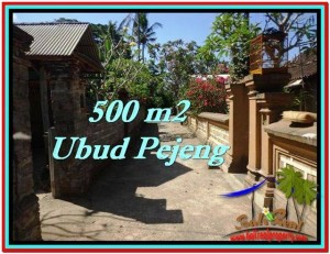 Affordable LAND SALE IN Ubud Pejeng BALI TJUB515