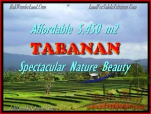 Magnificent PROPERTY TABANAN LAND FOR SALE TJTB152