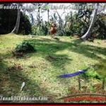 Exotic TABANAN BALI 7,500 m2 LAND FOR SALE TJTB207
