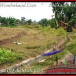 Affordable 3,250 m2 LAND IN TABANAN BALI FOR SALE TJTB208