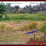 Affordable PROPERTY 3,250 m2 LAND FOR SALE IN Tabanan Selemadeg TJTB208