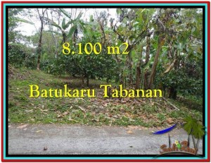 Beautiful 8.100 m2 LAND SALE IN TABANAN BALI TJTB212