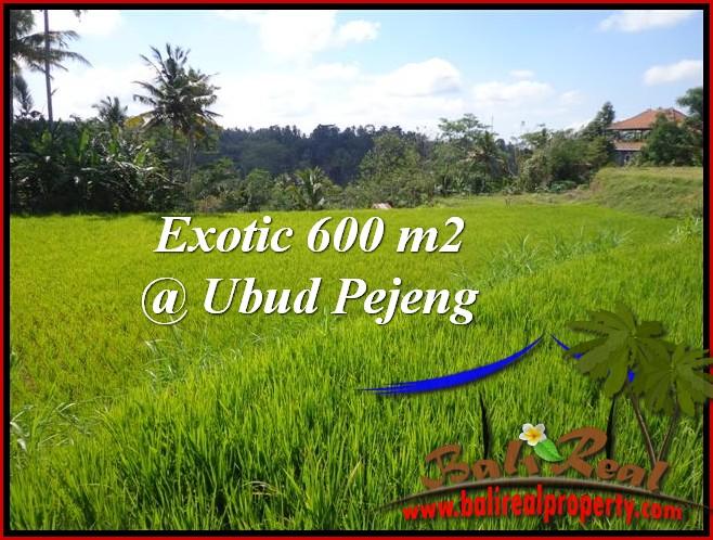 FOR SALE Affordable PROPERTY 600 m2 LAND IN UBUD BALI TJUB513