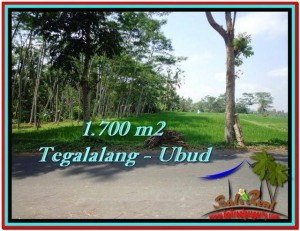 Exotic PROPERTY UBUD LAND FOR SALE TJUB518
