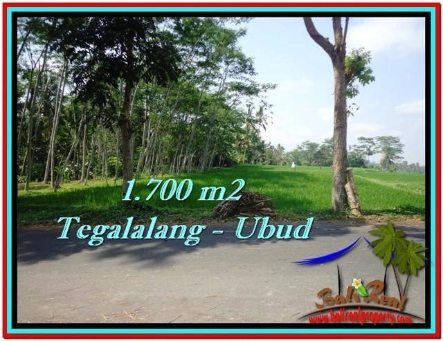 FOR SALE Exotic LAND IN Ubud Tegalalang BALI TJUB518