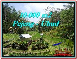 Magnificent PROPERTY LAND SALE IN UBUD TJUB519