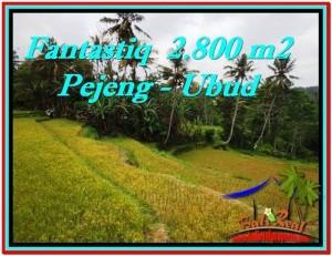 2,800 m2 LAND FOR SALE IN UBUD BALI TJUB521