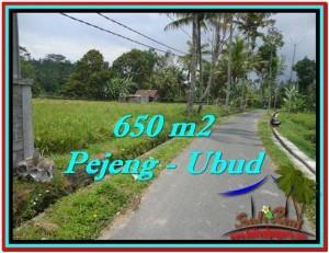 Exotic UBUD BALI 650 m2 LAND FOR SALE TJUB522