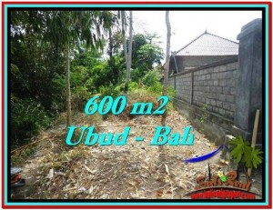 Magnificent 600 m2 LAND SALE IN UBUD BALI TJUB523