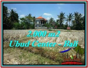 FOR SALE Beautiful 2,000 m2 LAND IN UBUD BALI TJUB524