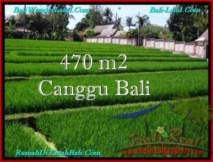 Magnificent PROPERTY Canggu Pererenan BALI LAND FOR SALE TJCG187