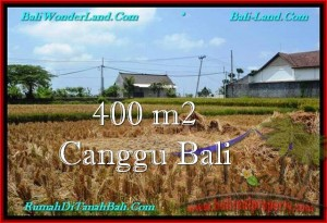 Beautiful PROPERTY LAND SALE IN Canggu Pererenan BALI TJCG188