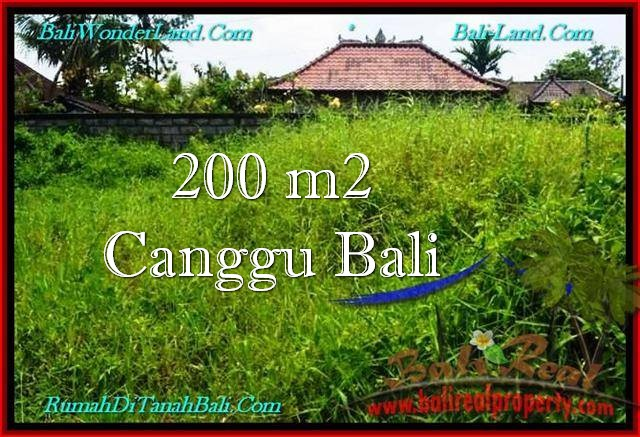 Exotic PROPERTY 200 m2 LAND FOR SALE IN Canggu Pererenan BALI TJCG190
