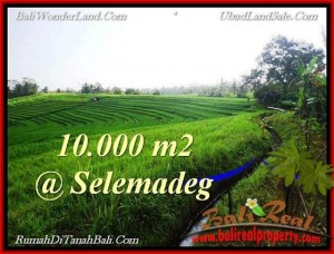 Affordable LAND SALE IN Tabanan Selemadeg BALI TJTB217