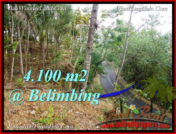 Beautiful PROPERTY Tabanan Selemadeg 4,100 m2 LAND FOR SALE TJTB218